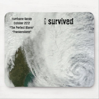 Sobreviví el huracán Sandy Mousepad Alfombrilla De Ratón