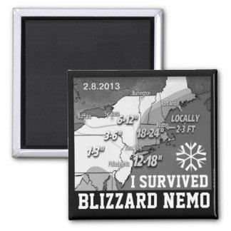 Sobreviví el imán 2013 de Nemo de la ventisca 11