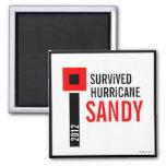 Sobreviví el imán 3 de Sandy del huracán