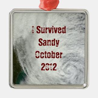 Sobreviví el ornamento de Sandy Adorno Navideño Cuadrado De Metal