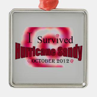 Sobreviví el ornamento de Sandy del huracán Adorno Navideño Cuadrado De Metal