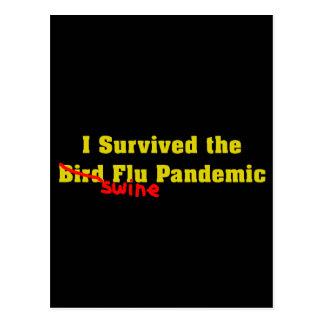 Sobreviví el pandémico de la gripe de los cerdos d tarjetas postales