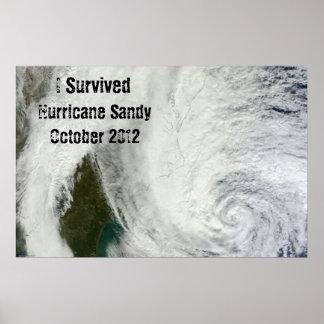 Sobreviví el poster de Sandy del huracán