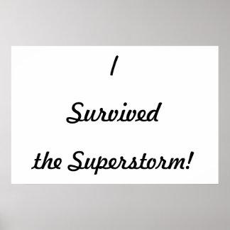 ¡Sobreviví el superstorm Impresiones