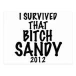 Sobreviví esa perra SANDY 2012, huracán Sandy Tarjetas Postales