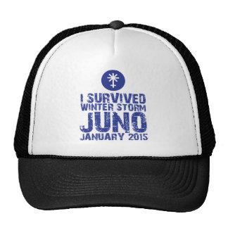 Sobreviví invierno tormenta Juno enero de 2015 Gorros