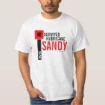 Sobreviví la camiseta 9 de Sandy del huracán