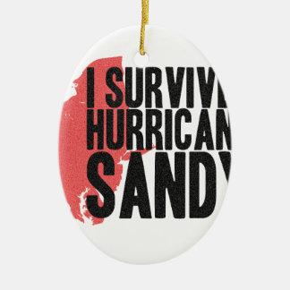 Sobreviví la camiseta de Sandy del huracán Adorno Navideño Ovalado De Cerámica