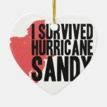 Sobreviví la camiseta de Sandy del huracán Ornamento De Navidad