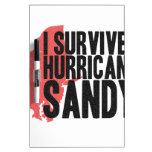 Sobreviví la camiseta de Sandy del huracán Pizarra