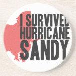 Sobreviví la camiseta de Sandy del huracán Posavasos Personalizados