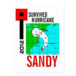 Sobreviví la postal 1 de Sandy del huracán