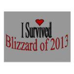 Sobreviví la postal 2013 de la ventisca