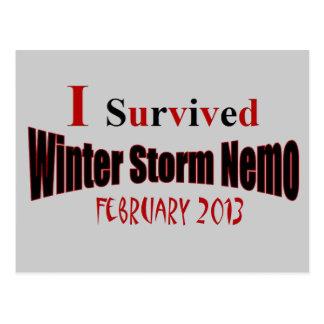 Sobreviví la postal de la tormenta NEMO del invier