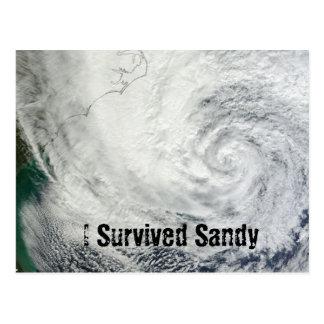 Sobreviví la postal de Sandy