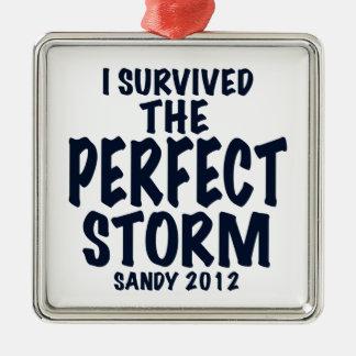 Sobreviví la tormenta perfecta, Sandy 2012, Adorno Navideño Cuadrado De Metal