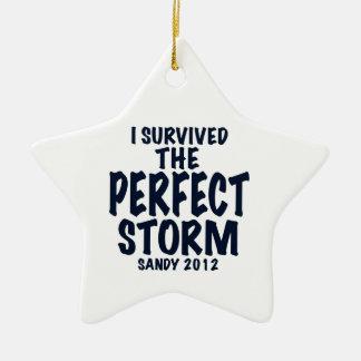 Sobreviví la tormenta perfecta, Sandy 2012, Adorno Navideño De Cerámica En Forma De Estrella