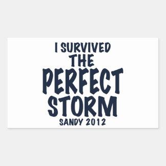 Sobreviví la tormenta perfecta, Sandy 2012, Pegatina Rectangular