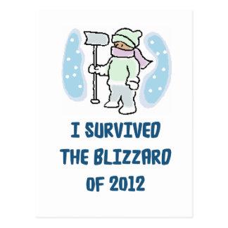 Sobreviví la ventisca de 2012 tarjetas postales