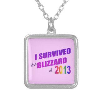 Sobreviví la ventisca de 2013 collares