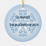 Sobreviví la ventisca del copo de nieve 2014 ornatos