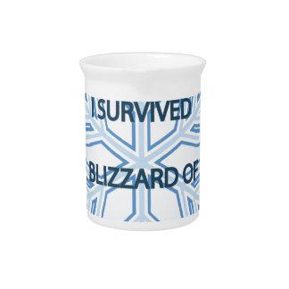 Sobreviví la ventisca del copo de nieve 2014 jarras