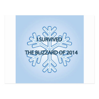 Sobreviví la ventisca del copo de nieve 2014 tarjetas postales