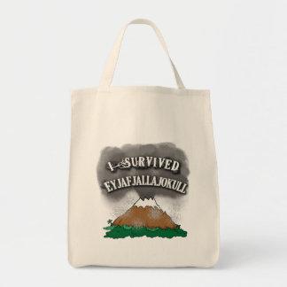 Sobreviví las camisetas de Eyjafjallajokull, Bolsa