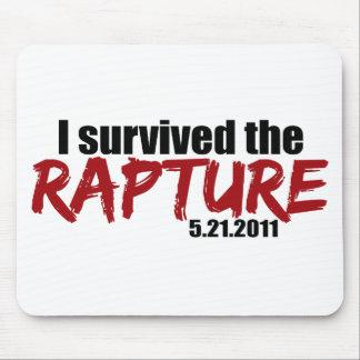 Sobrevivió el éxtasis tapetes de ratón