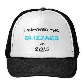 Sobrevivió la ventisca 2015 gorro