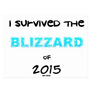 Sobrevivió la ventisca 2015 tarjetas postales