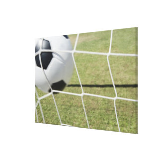 Soccer Ball and Goal 3 Canvas Print