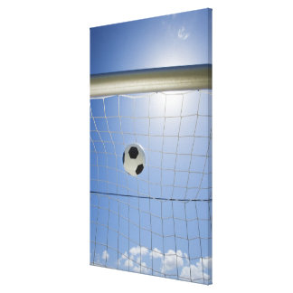 Soccer Ball and Goal Canvas Print