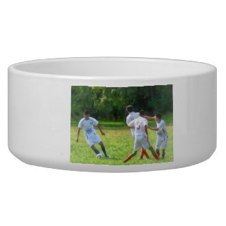Soccer Ball in Play Pet Bowl