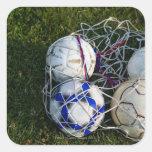 Soccer balls in net square sticker