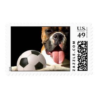 Soccer boxer postage