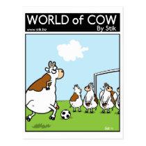 Soccer Cows Postcard
