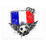 Soccer fan France Postcard