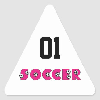 Soccer in Pink with Soccer Balls Triangle Sticker