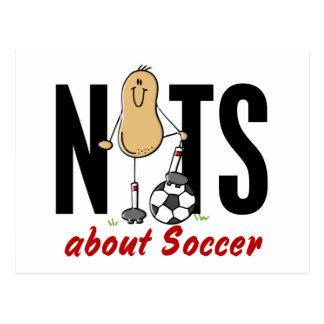 Soccer Nut 2 Postcard