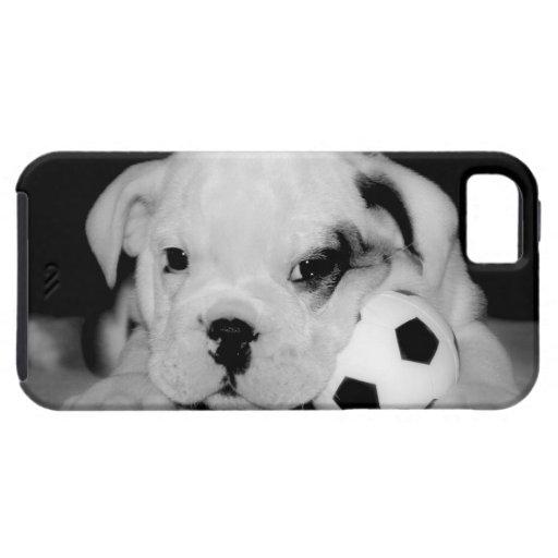 """Soccer Puppy"" English Bulldog iPhone 5 Cases"