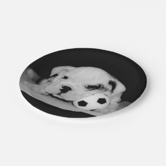 """Soccer Puppy"" English Bulldog Paper Plate"