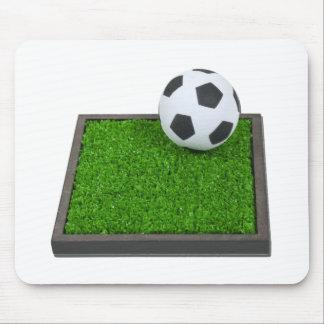 SoccerBallGrass101311 Mouse Pad