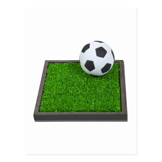 SoccerBallGrass101311 Postcard
