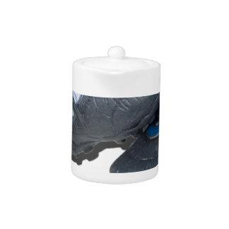 SoccerBallTrackShoes050915