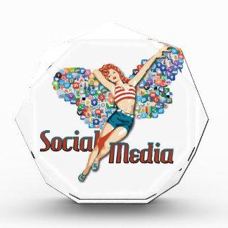 Social Media fairy pin-up Award