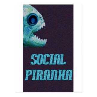 Social Piranha Logo Items Postcard