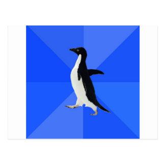 Social-Torpe-Pingüino-Meme Tarjetas Postales