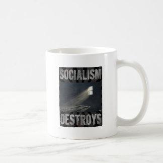 Socialism Destroys Coffee Mug
