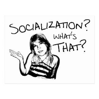 Socialization? What's That? Postcard